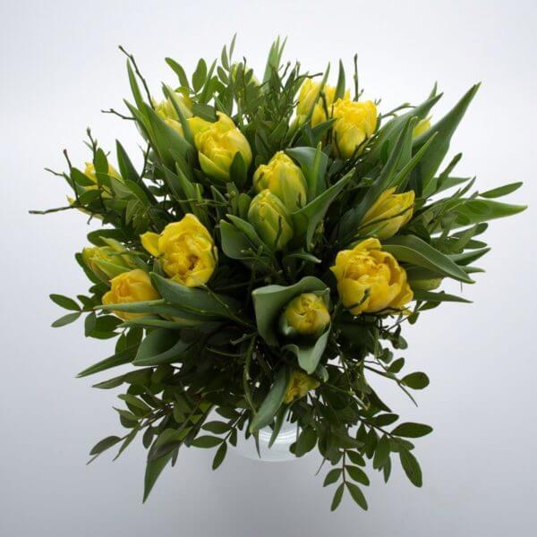 Gule Tulipaner, fra oven