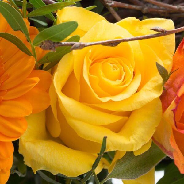 Påskebuket, blomstrende rede, detalje 1