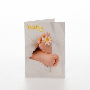 Baby magurit kort