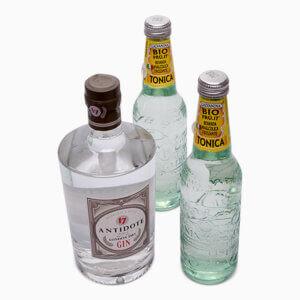 Billede af en flaske Gin og to flasker Tonic